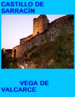 Castillo de Sarrac�n